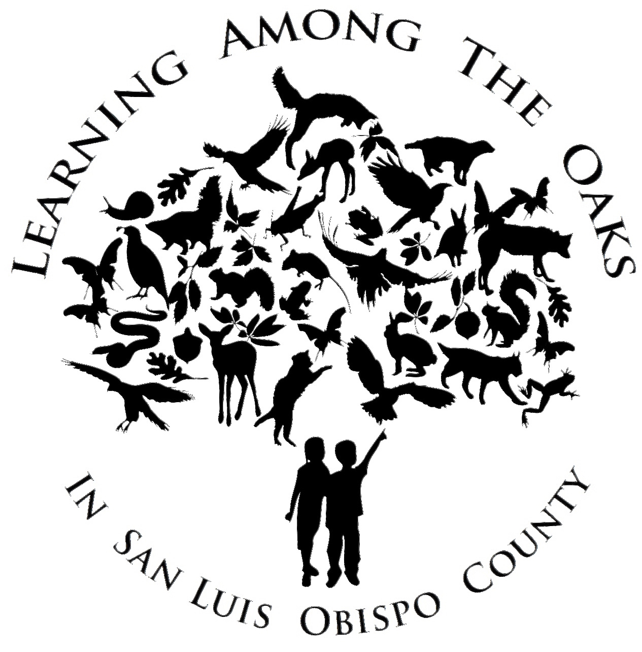 Learning Among the Oaks